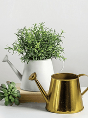 Brass Watering Can - Cloth + Cabin