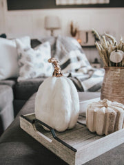 White Feather Pumpkin - Cloth + Cabin