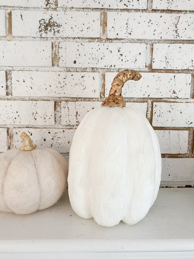 White Feather Pumpkin