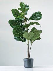 Faux Potted Fiddle Leaf Fig - Cloth + Cabin