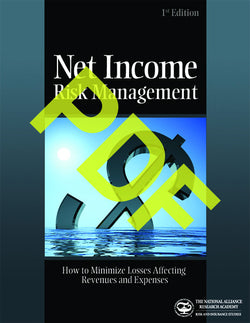 Net Income Risk Management: How to Minimize Losses Affecting Revenues and Expenses—Digital PDF