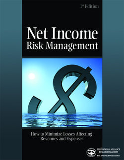 Net Income Risk Management: How to Minimize Losses Affecting Revenues and Expenses