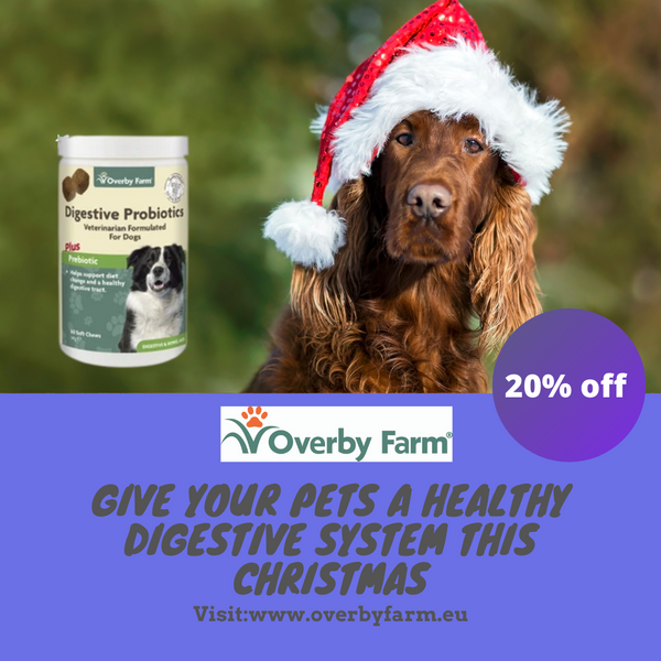 Gift your pet a healthy digestive system this Christmas with 20% off!