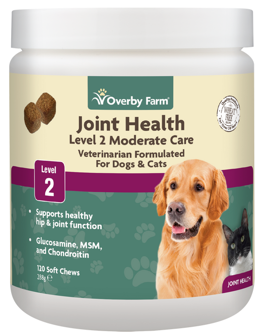 Joint Health Level 2 for Dogs & Cats Soft Chew 120pcs