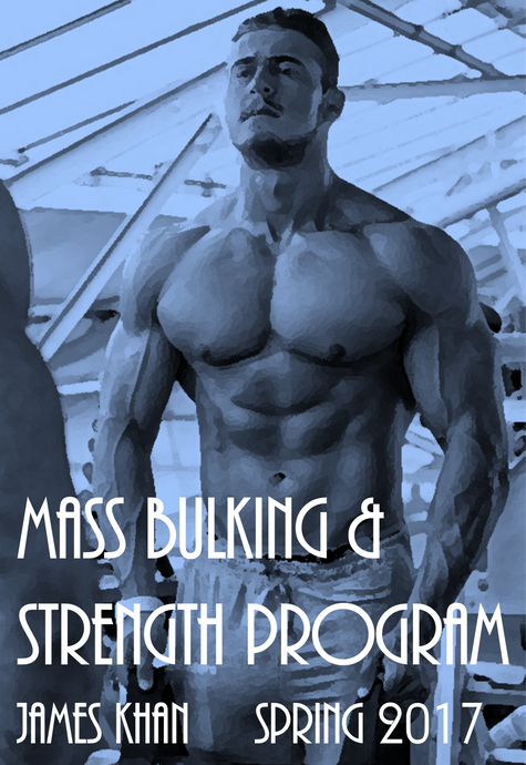 Mass Bulking & Strength Program