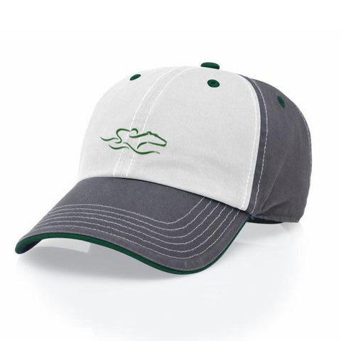 A tri-color adjustable relaxed fit hat in gray, green and white. EMBRACE THE RACE icon center front and wordmark on the back.