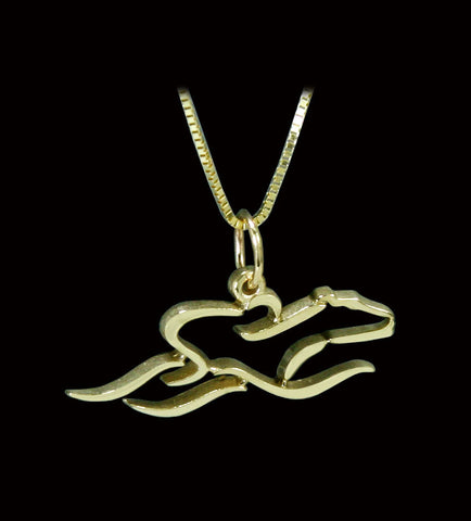 A 14 K Gold 22 inch adjustable chain with 7/8ths inch EMBRACE THE RACE icon pendant.
