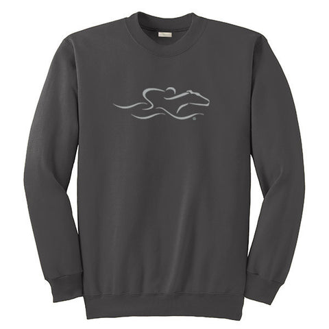 A gray crewneck sweatshirt with EMBRACE THE RACE logo center front.  Workmark across the back shoulder.