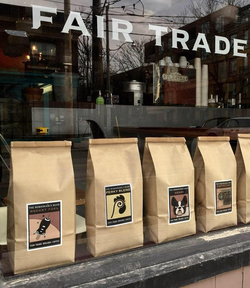 Toronto roasters give tips for making coffee at home