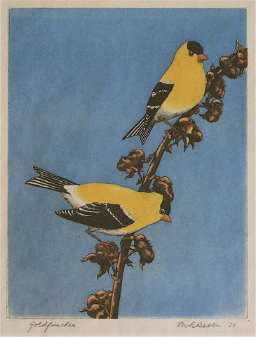 Maurice R. Bebb Goldfinches