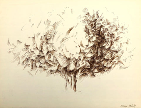 Olive Tree, by Norman Gorbaty, Amer., (B. 1932)