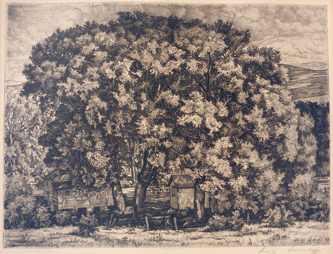 """Big Willow"" by Luigi Lucioni, Amer., (1900-1988)"