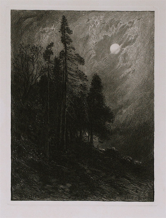 James D. Smillie Cedars by Moonlight