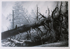 """Hurricane (Port Clyde, Maine)"" by Stow Wengenroth"