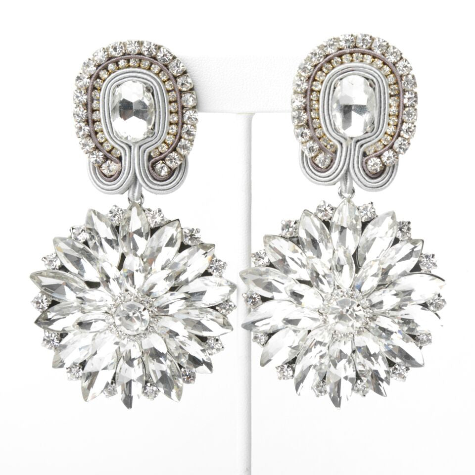 Silver Shine Earrings
