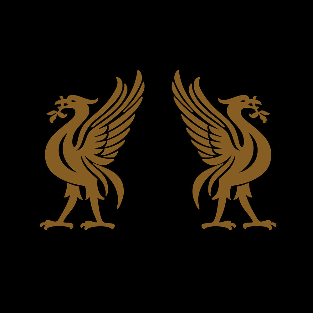 Liverbirds w/ Jon Snodgrass