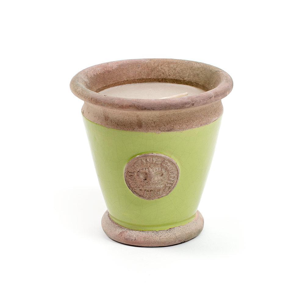 Royal Botanic Gardens Small Kew Candle in Lime - 1 Each