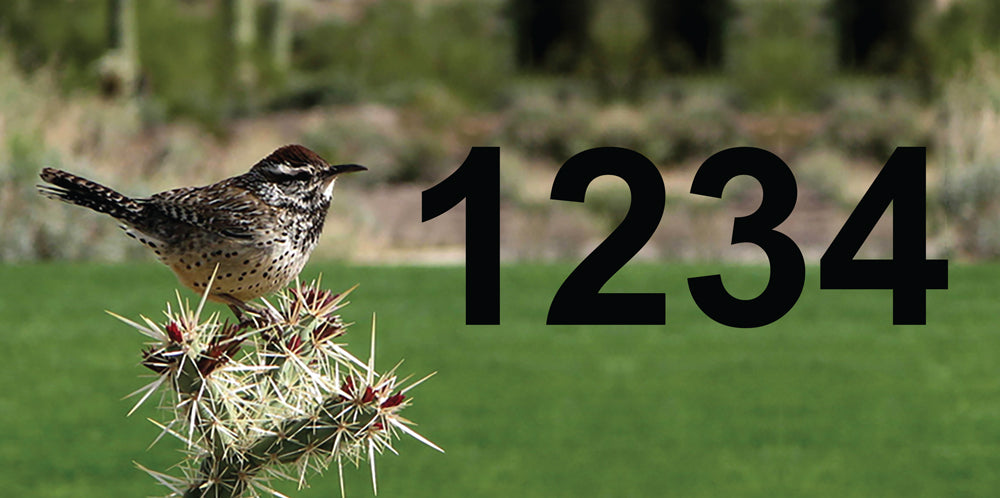 "Cactus Wren Address Plaque - 12"" x 6"""