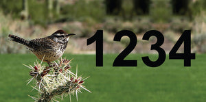 "Roadrunner Address Plaque - 12"" x 6"""