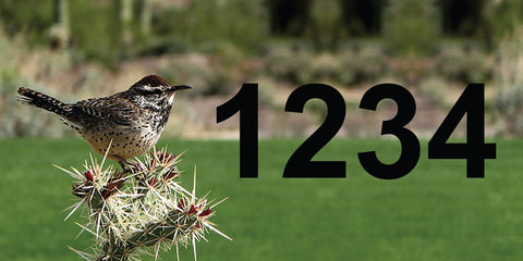 "Cactus Wren Address Plaque - 7"" x 3.5"""