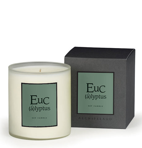 AB Home Eucalyptus Soy Candle