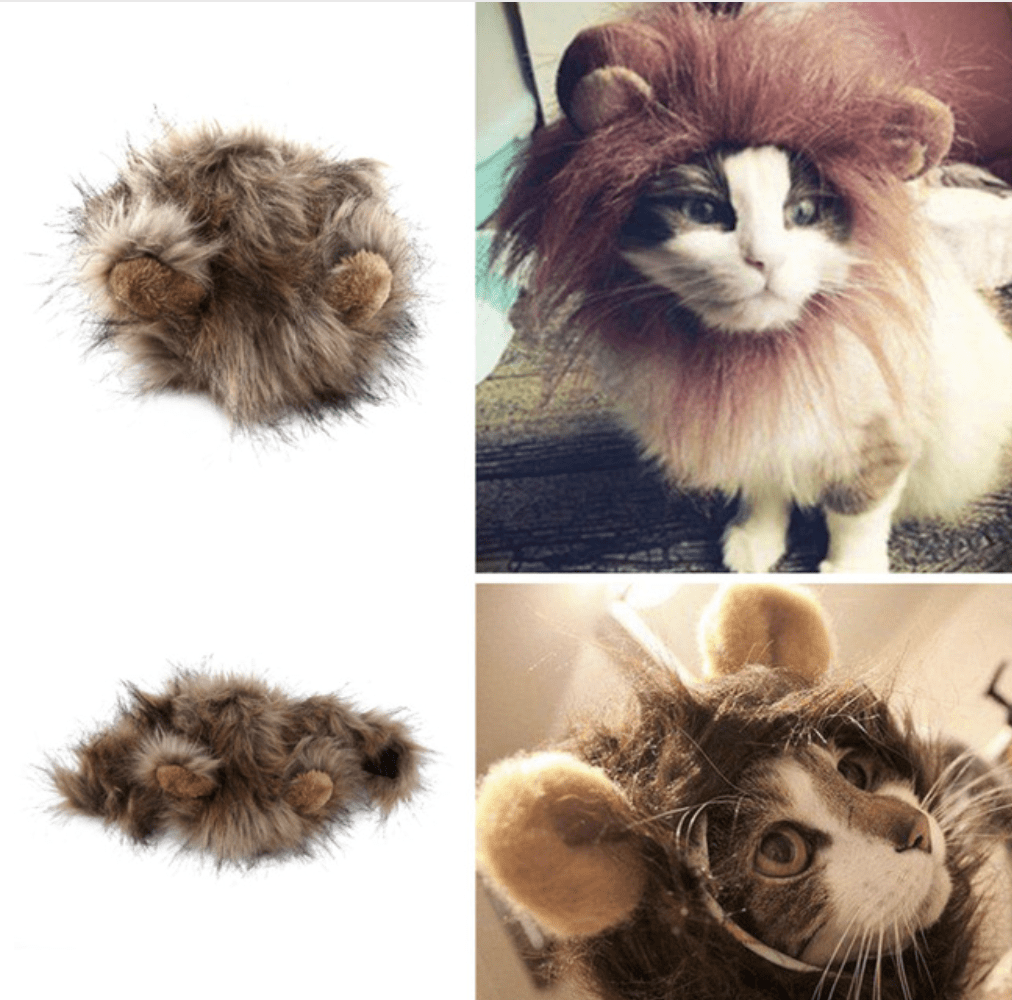 Lion Wig, Accessories - catsbeststore