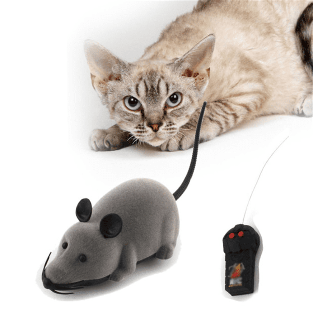 R/C Cat Toy, Accessories - catsbeststore