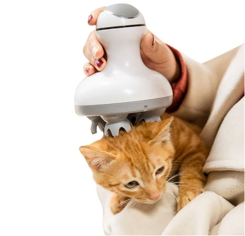 Image of Electric Cat Massager