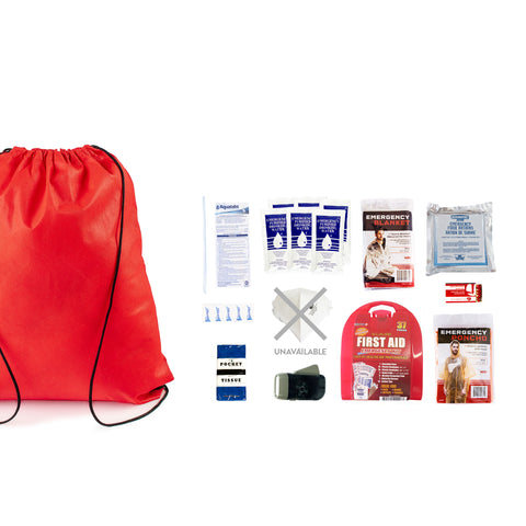 Starter Earthquake Bag