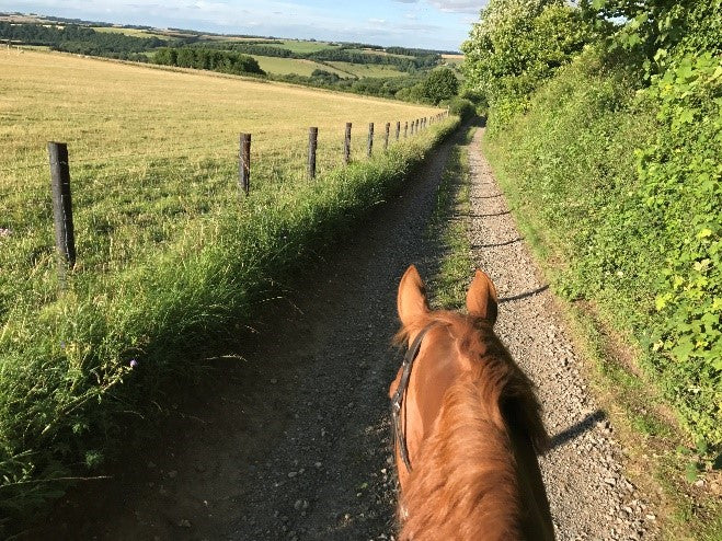"Guest Blog Post - ""Don't overdo it!"" – Returning to the saddle after rider injury"