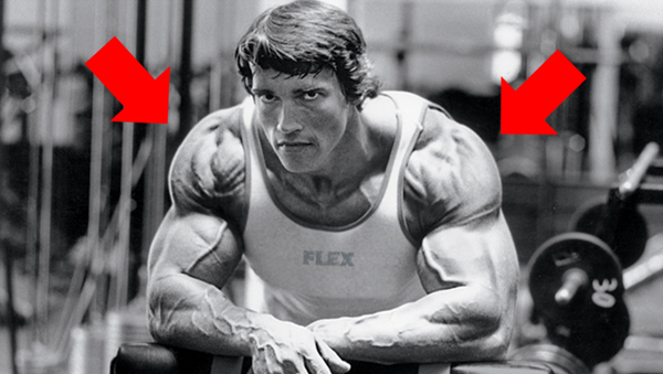 How Arnold Trained Shoulders
