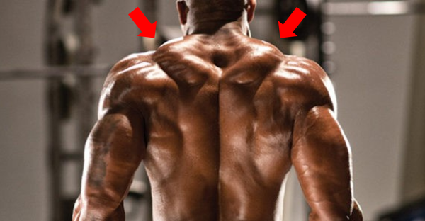 Try This for Bigger Traps