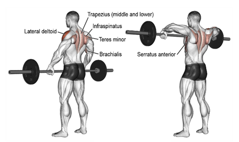 Good Form Upright Row