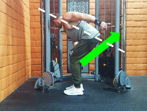 Lat Lever hits the range of motion that emphasizes the lower lats