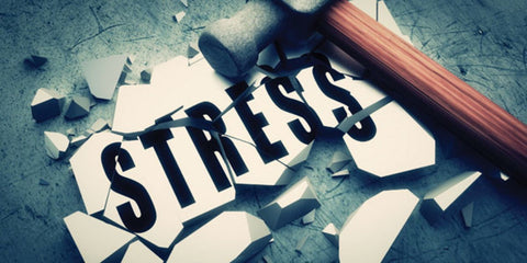 Stress slows muscle recovery and raises the catabolic hormone Cortisol