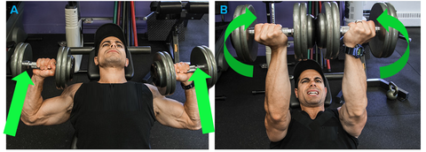 Dumbbell Press with Twist at top for upper chest