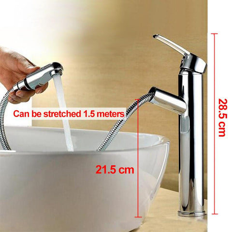 Chrome Water Pump Faucet Pull-out sprayer