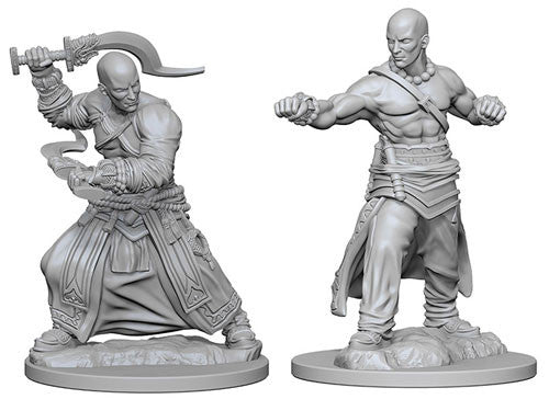Pathfinder Battles Deep Cuts Miniatures: Human Male Monk | Game Haven
