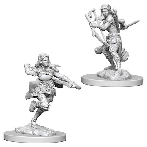 D&D Nolzur's Marvelous Miniatures: Air Genasi Female Rogue | Game Haven