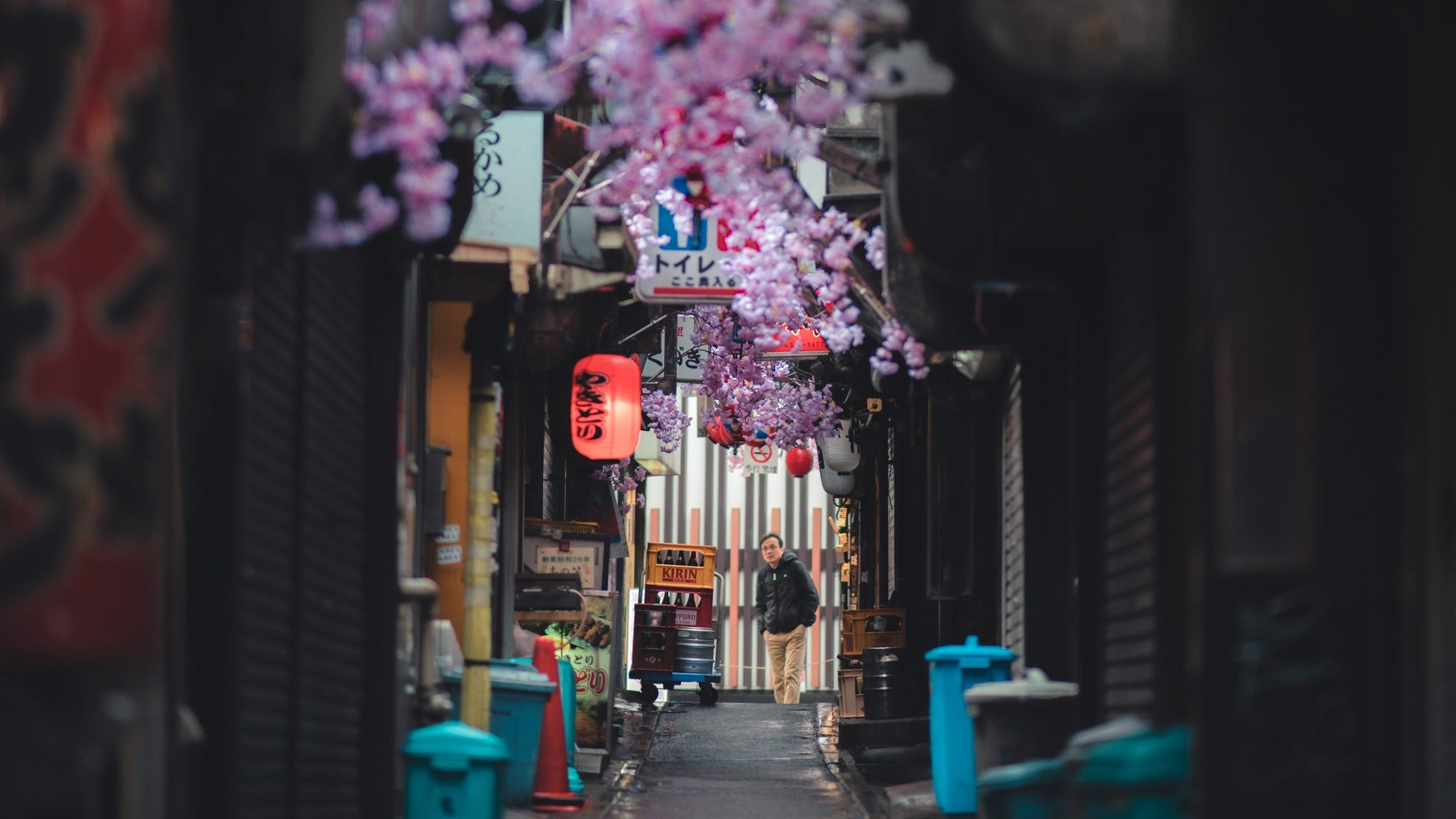 Shinjuku Omoide Yokocho - alleys filled with culture and Yakitori - Pat Kay Away