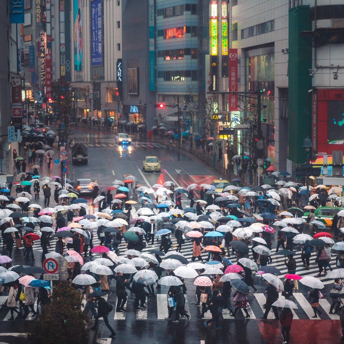 Shibuya crossing - 10 of the most Instagrammable places in Tokyo - Pat Kay Blog
