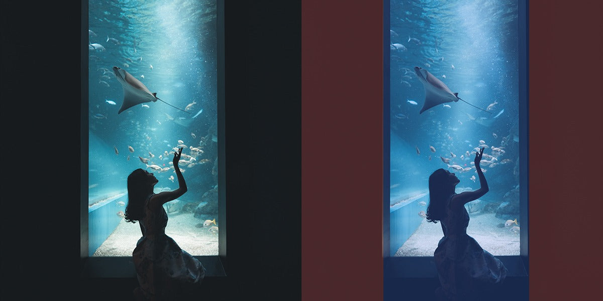 Positive and negative space in photography can suggest subject isolation