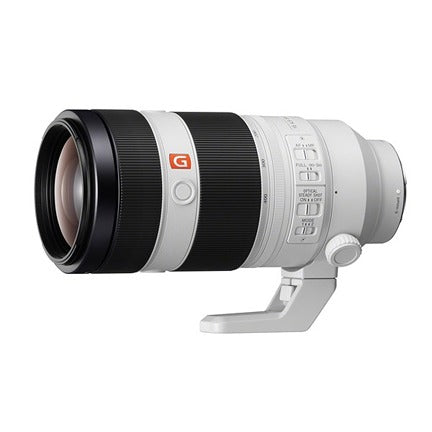 Sony 100-400mm G Master - Pat Kay Photography Gear