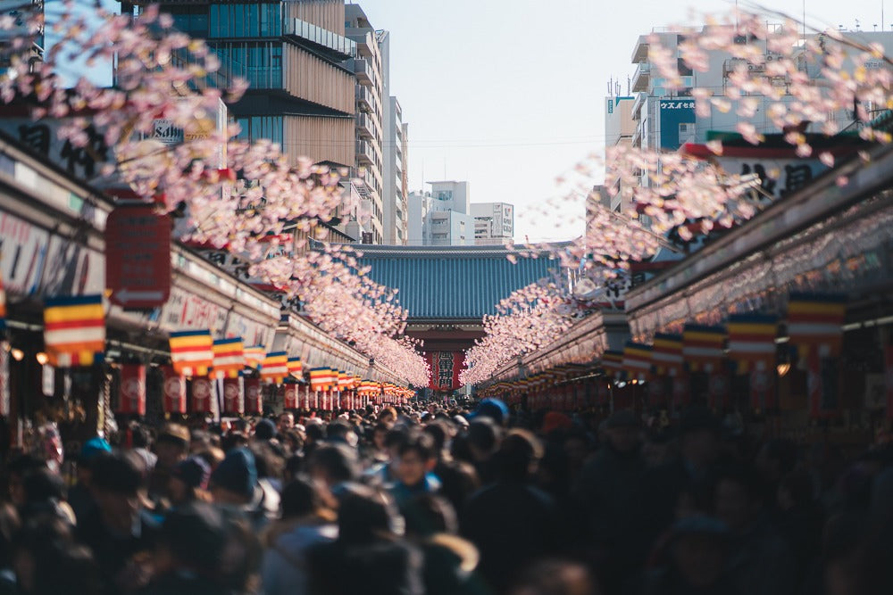 New years - When is the best time to visit Japan - Pat Kay Blog