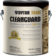 Dyton 174 Clean Guard Exterior Paint Mold Mildew And