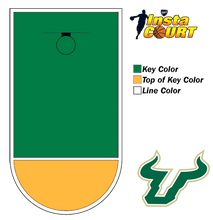 Dyco® InstaCOURT™ | University of South Florida