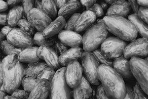 cacao beans dark chocolate