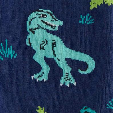Land Of The Dino Socks