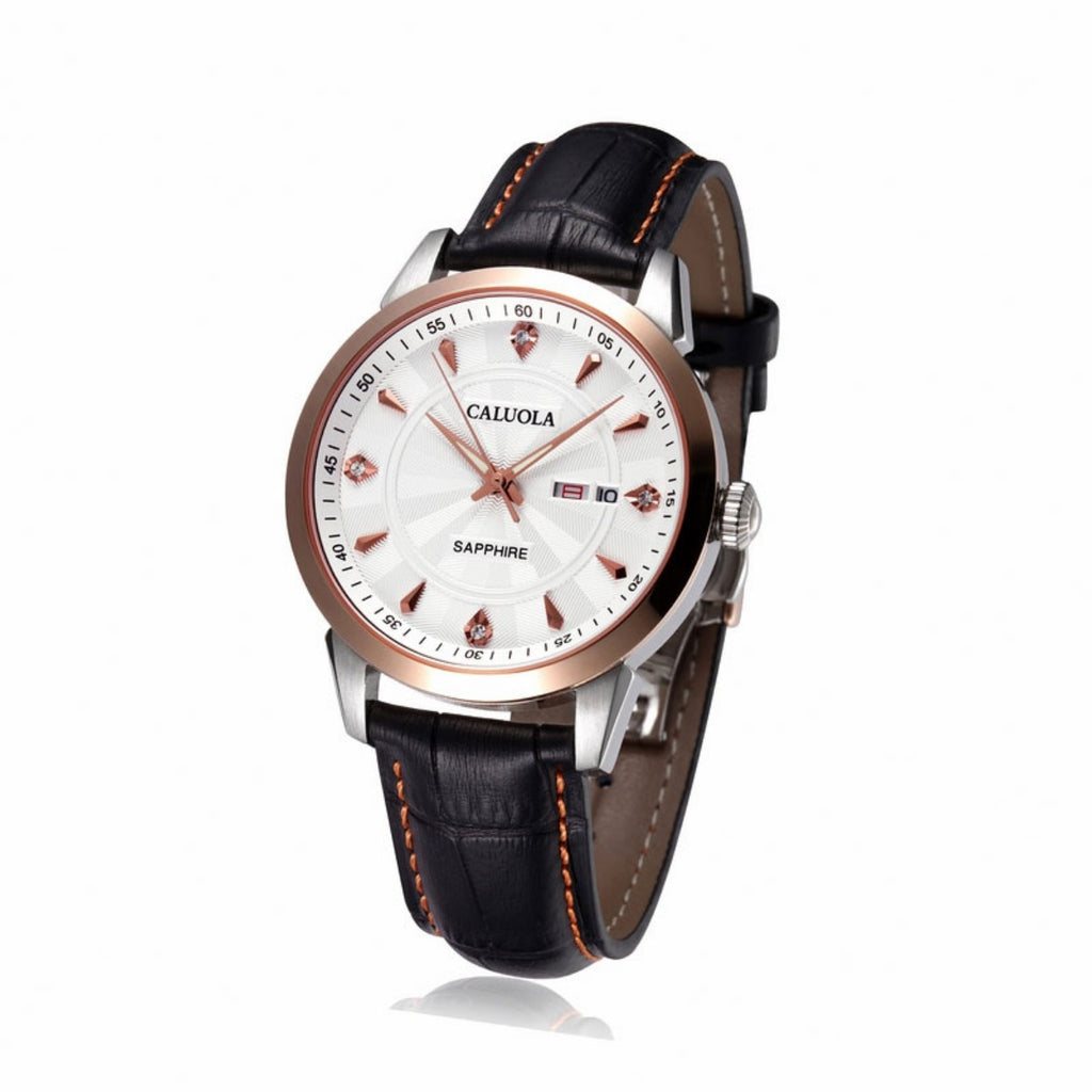 Caluola Fashion Men Watches Simple Waterproof Leather Quartz Casual Watch CA1070G