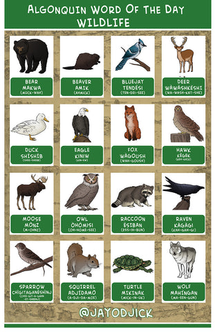 Signed Algonquin Word of the Day Wildlife Print